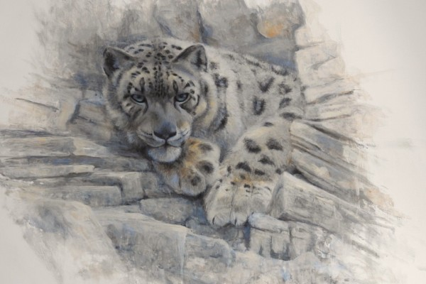 Schneeleopard Portrait