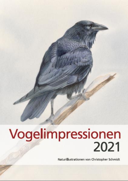Vogelimpressionen 2021