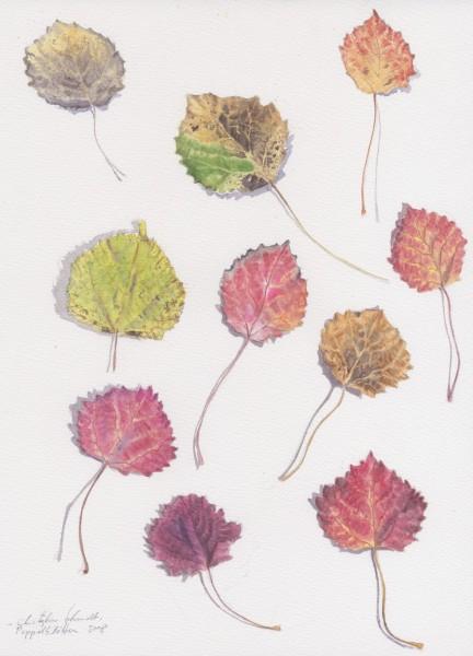 Pappelblätter