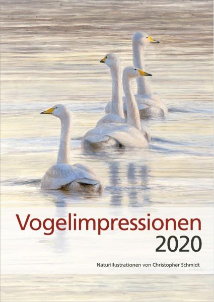 Vogelimpressionen 2020