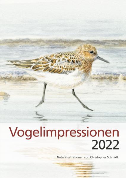 Vogelimpressionen 2022